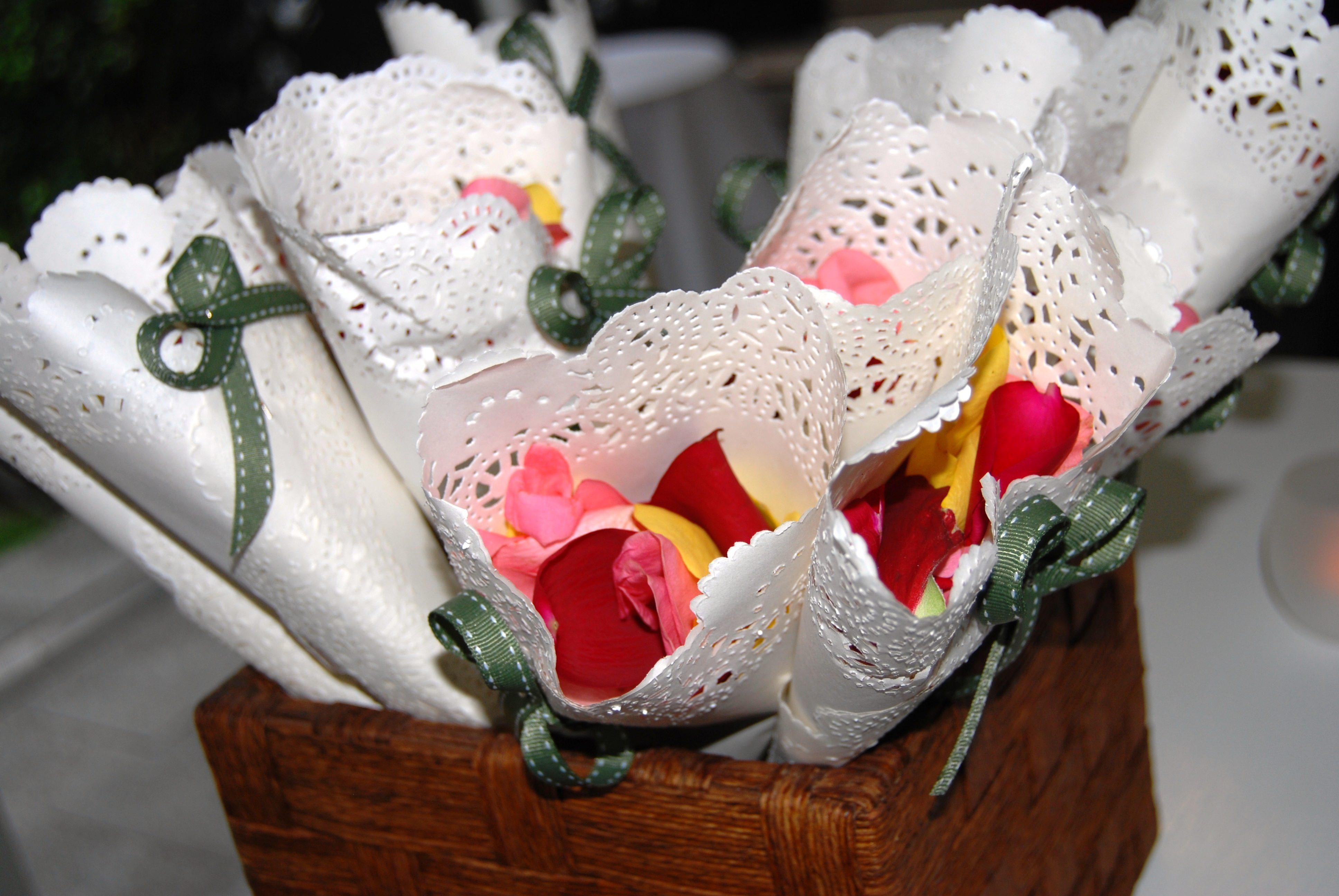 Suzanne Riley petal Cones Marriage Celebrant sunshine Coast