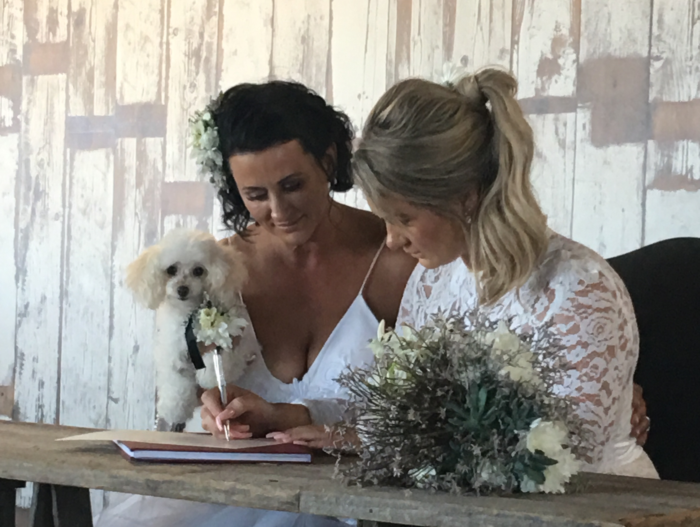 Suzanne-Riley-Marriage-Celebrant-ssm-poodle-girls-